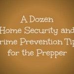 A Dozen Home Security and Crime Prevention Tips for the Prepper