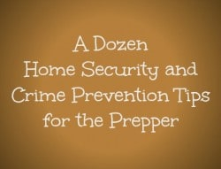 A Dozen Home Security and Crime Prevention Tips for the Prepper