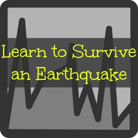 Learn to Survive an Earthquake