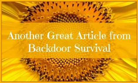Another Great Article Update from Backdoor Survival 470