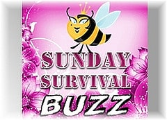 The Sunday Survival Buzz – Volume 71