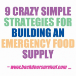 9 Strategies For Building An Emergency Food Supply