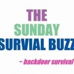 The Sunday Survival Buzz Volume 91