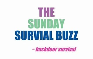 Sunday Survival Buzz Quote