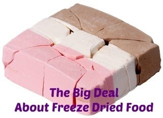 The Big Deal About Freeze Dried Food