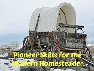 Pioneer Skills 300