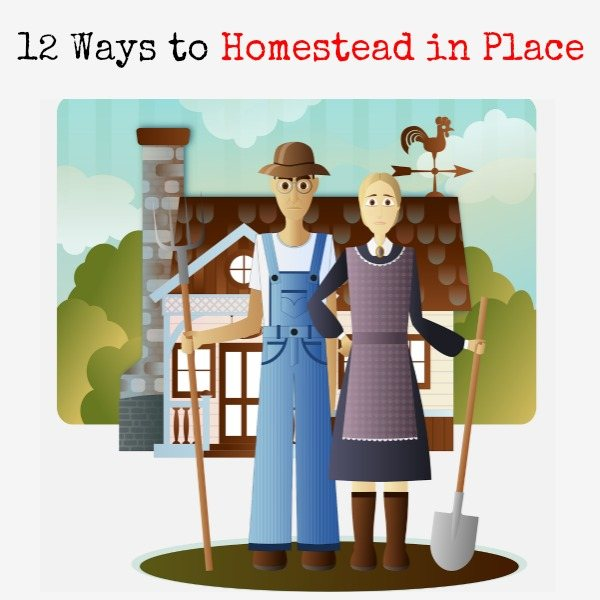 12 Ways to Homestead in Place | Backdoor Survival