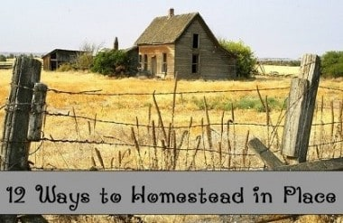12 Ways to Homestead in Place