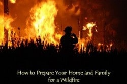 How to Prepare Your Home and Your Family for a Wildfire