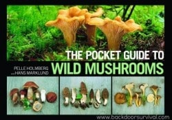 BDS Book Festival – The Pocket Guide to Wild Mushrooms
