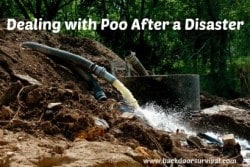 Dealing with Poo After a Disaster