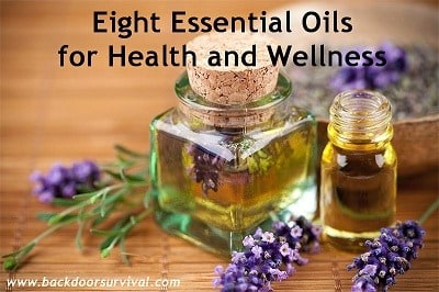 Eight Essential Oils for Health and Wellness