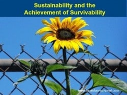 Sustainability and the Achievement of Survivability