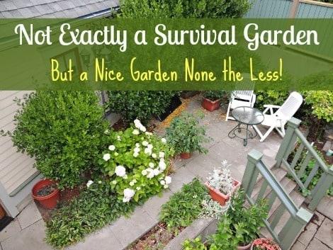 Not Exactly a Survival Garden