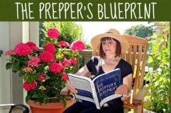 Summer 2014 Book Festival: The Prepper's Blueprint