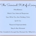 Seven Important Elements in The Survival Kit of Living