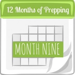 12-Months-of-Prepping-Month-Nine.jpg