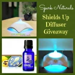 Shields-Up-Diffuser-Giveaway-470.jpg