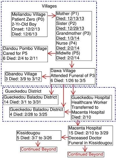 Ebola Origins Chart 400