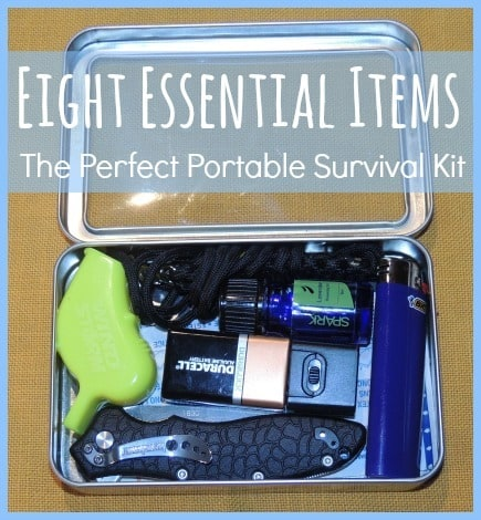 Perfect Portable Survival Kit