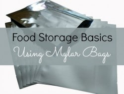 Survival Basics: Using Mylar Bags for Food Storage