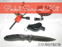 pocket-survival-kit-Nov-2014.jpg