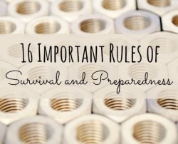 16 Important Rules of Survival and Preparedness