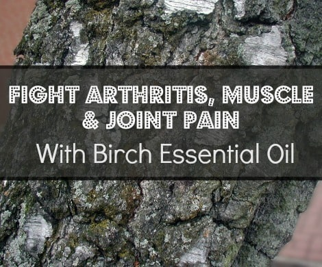 Birch Essential Oil for Arthritis, Muscle and Joint Pain |www.backdoorsurvival.com|