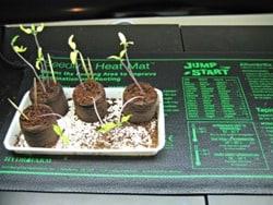 Grow Mat 380