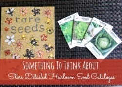 Save a few heirloom seed catalogs with your seed storage - Backdoor Survival
