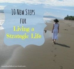 10 New Steps for Living a Strategic Life - Backdoor Survival