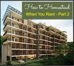 How to Homestead When You Rent: Part Two