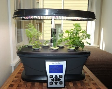 Aerogarden - Day #28 - Backdoor Survival