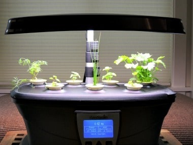 The AeroGarden with Herbs - Backdoor Survival