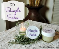 DIY Simple Salve - Backdoor Survival