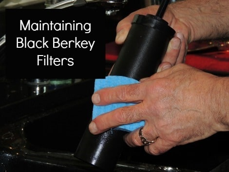 Maintaining Black Berkey Filters - Backdoor Survival