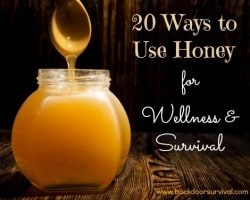Honey for the Survival Pantry
