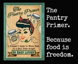 Pantry Primer Daisy Luther Banner Ad