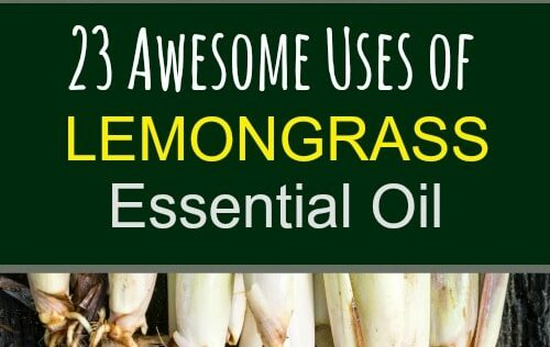 23 Awesome Uses for Lemongrass Essential Oil