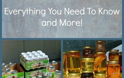 Canning Jars 101 – Everything You Need To Know and More!