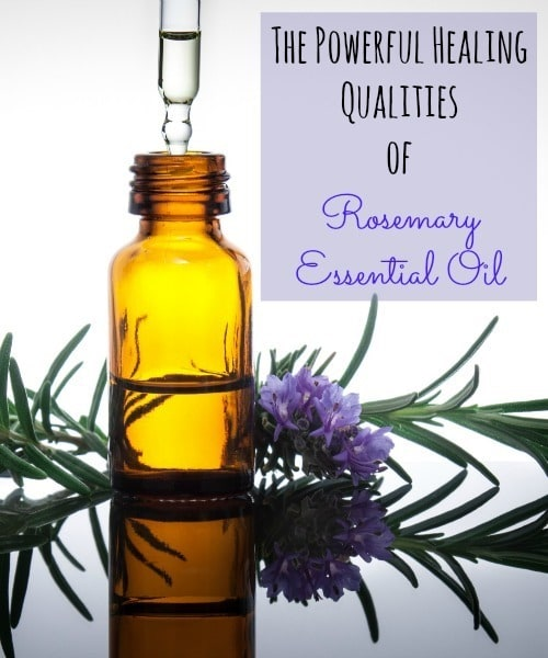 Powerful Healing Qualities of Rosemary Essential Oil - Backdoor Survival