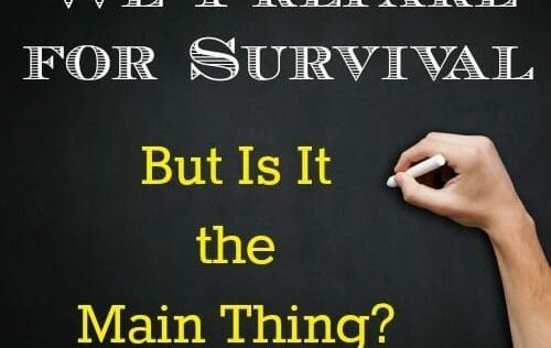 We Prepare for Survival But Is It The Main Thing?