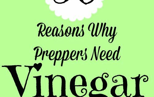 50 Reasons Why Preppers Need Vinegar in Their Stockpiles