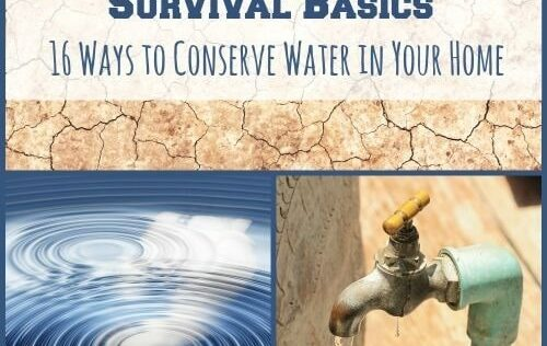 Survival Basics: 16 Ways to Conserve Water in Your Home