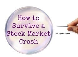 How-to-Survive-a-Stock-Market-Crash