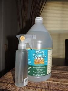 Vinegar & Peppermint Juice   Backdoor Survival