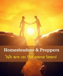 Homesteaders and Preppers: We Are All On the Same Team