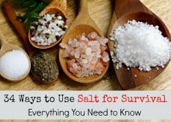 34 Ways to Use Salt for Survival: Everything You Need to Know