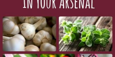 7 Herbal Remedies You Should Have In Your Arsenal