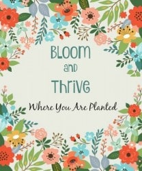 The Survival Buzz #190: Bloom and Thrive Where You Are Planted